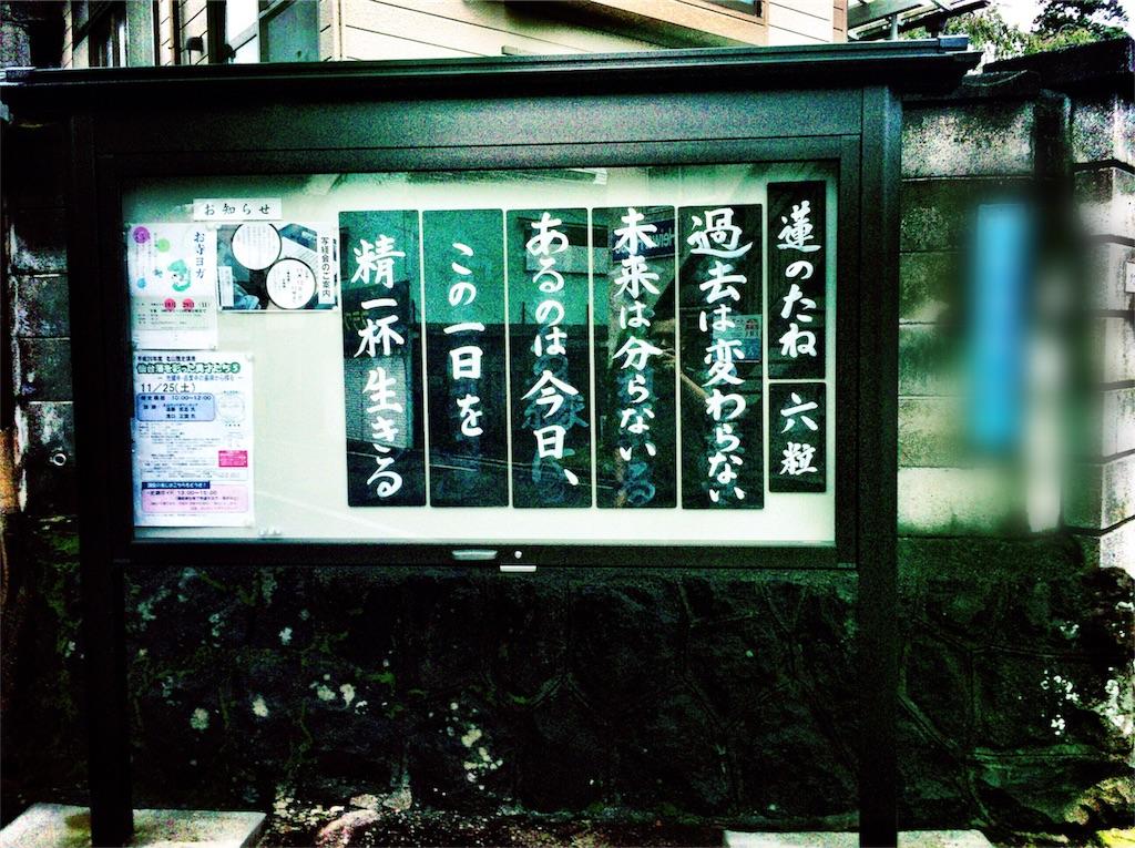 f:id:usakohiroshi242:20180726155921j:image