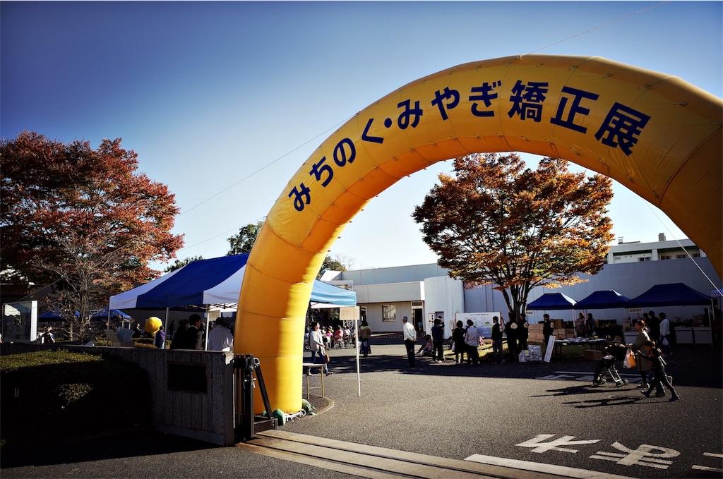 f:id:usakohiroshi242:20181105001423j:image