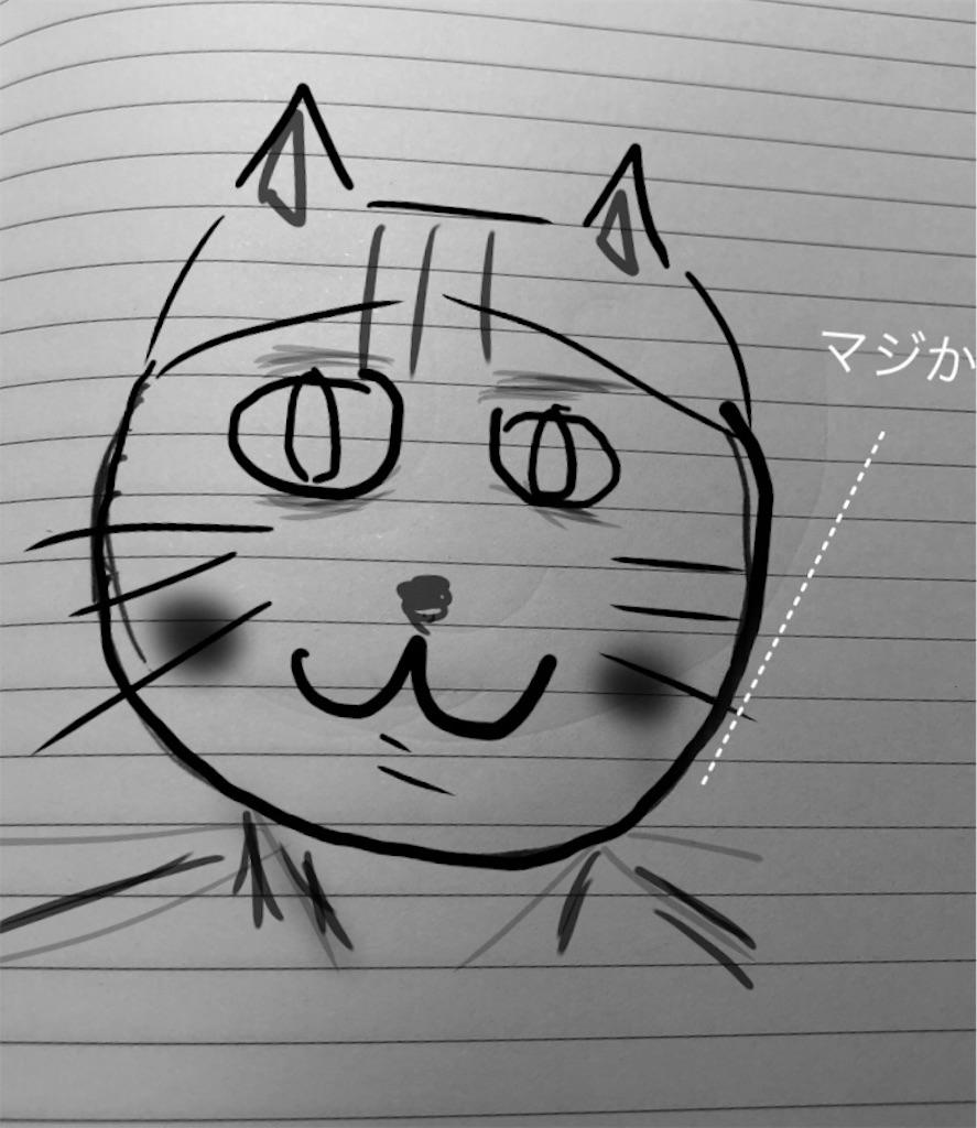 f:id:usakohiroshi242:20181108204342j:image