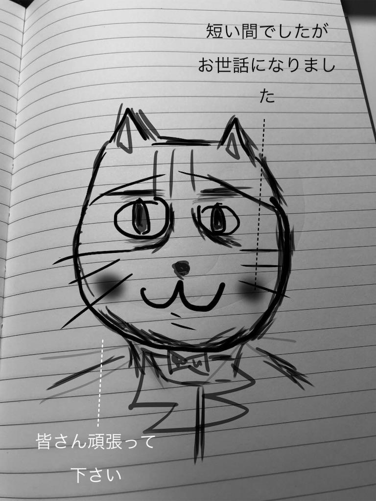 f:id:usakohiroshi242:20181110121225j:image