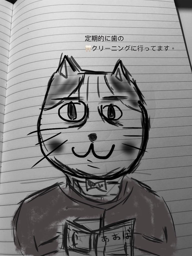 f:id:usakohiroshi242:20181123172927j:image