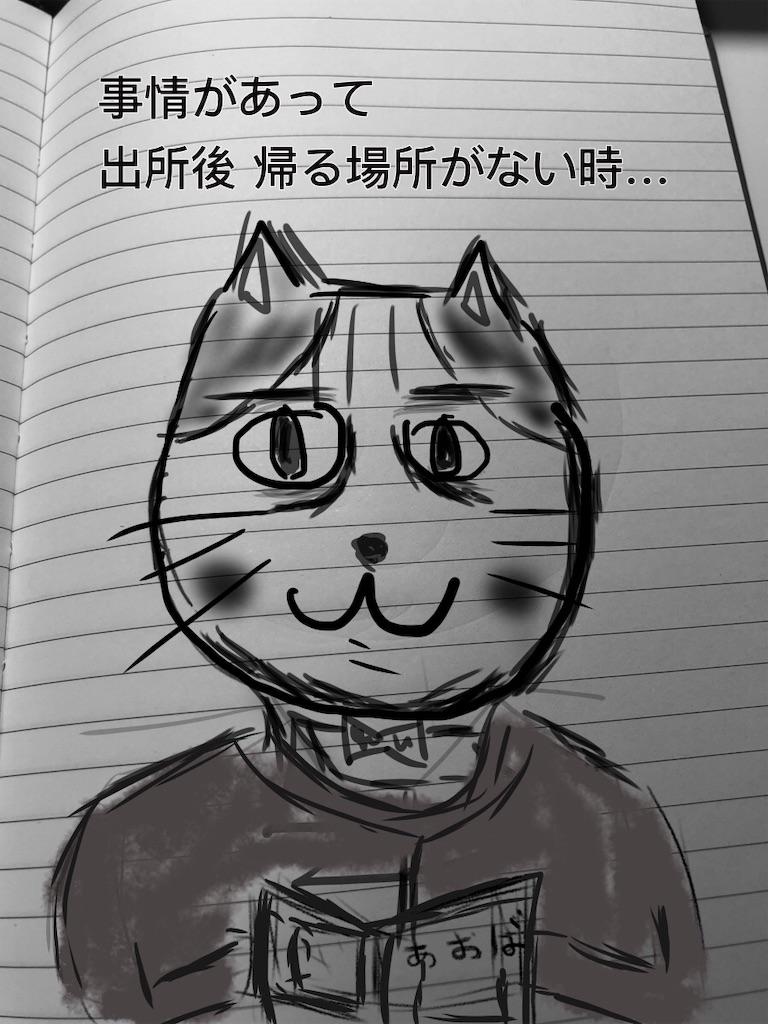 f:id:usakohiroshi242:20181129203509j:image