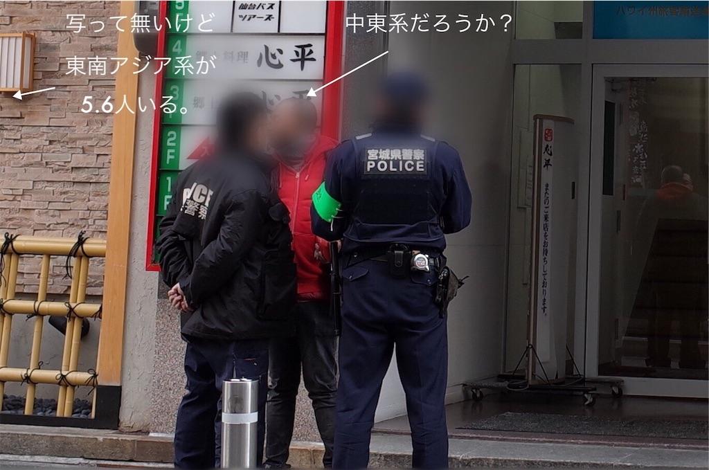 f:id:usakohiroshi242:20190101174924j:image
