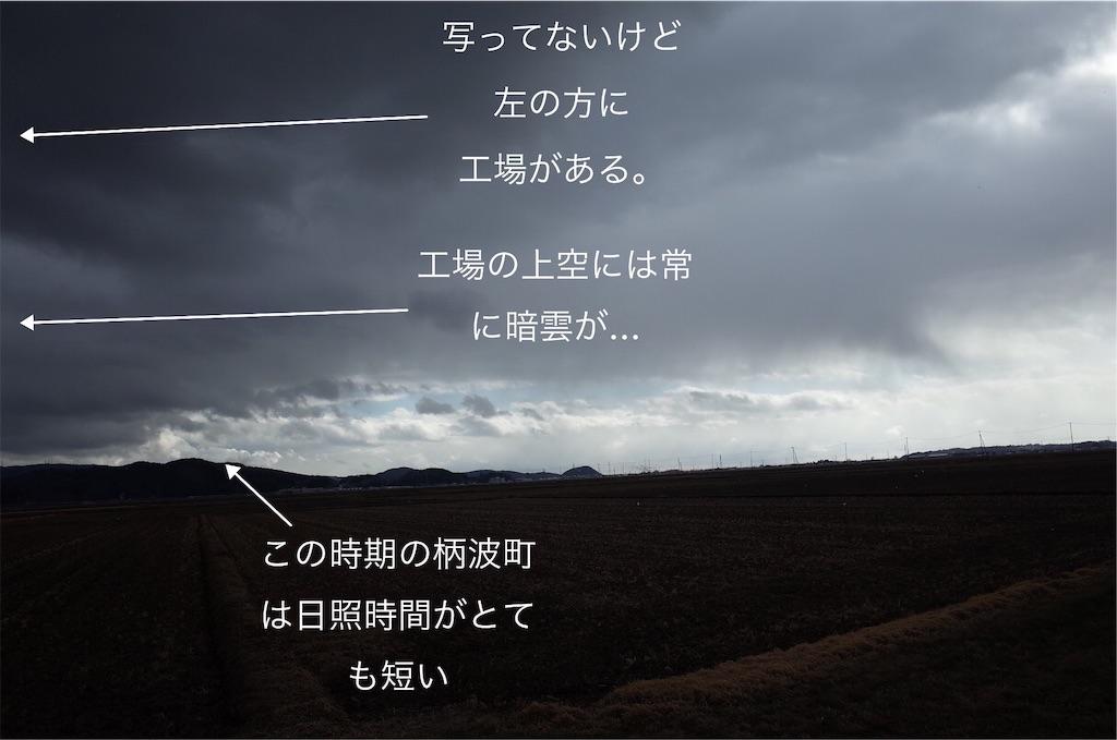 f:id:usakohiroshi242:20190107182144j:image