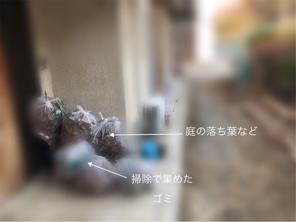 f:id:usakohiroshi242:20190129135514j:image