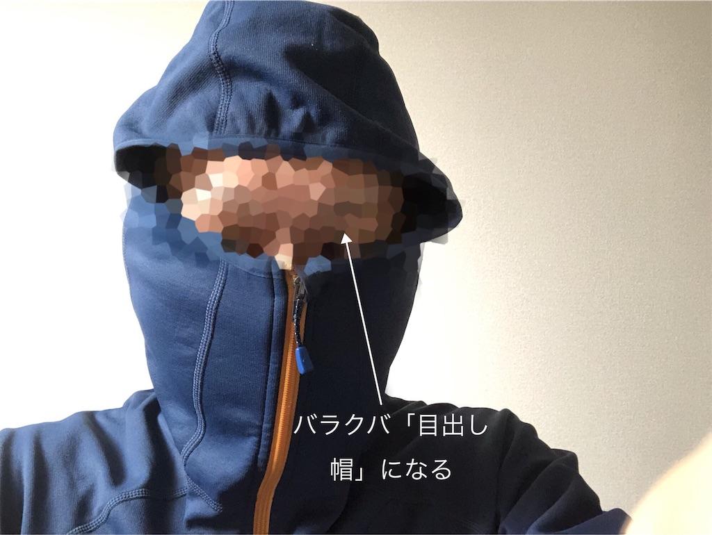 f:id:usakohiroshi242:20190131181919j:image