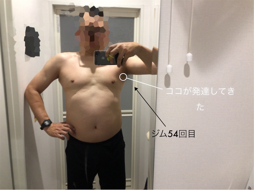 f:id:usakohiroshi242:20190222111315j:image