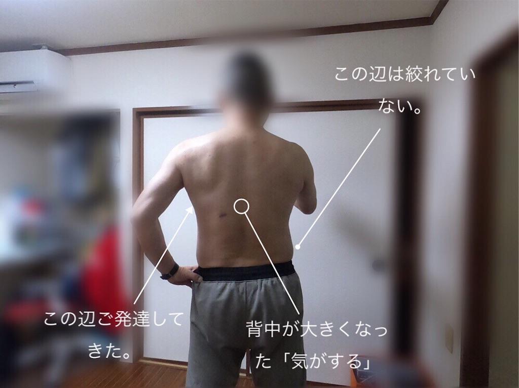 f:id:usakohiroshi242:20190302072922j:image