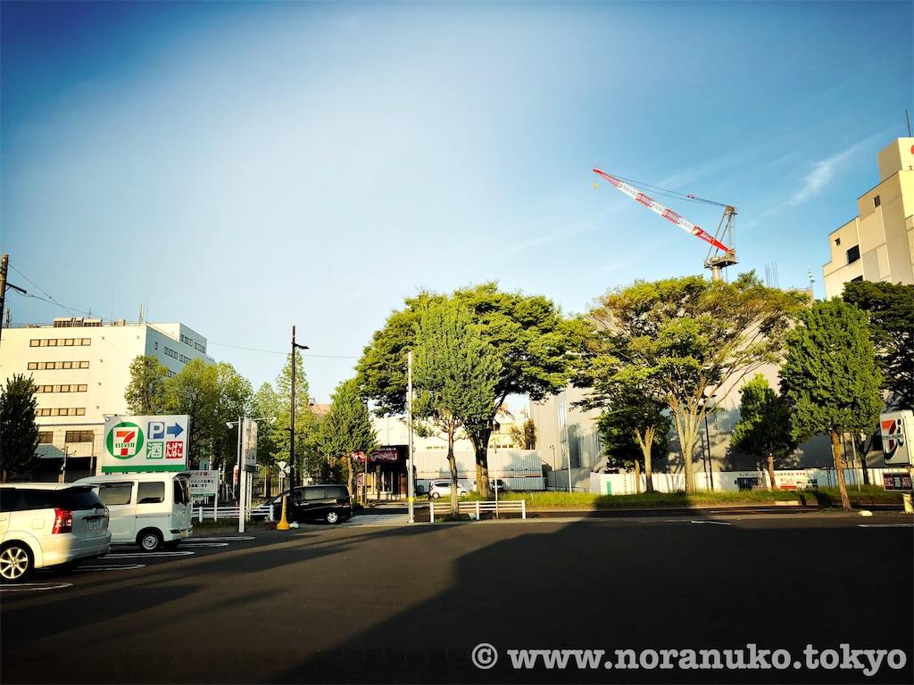 f:id:usakohiroshi242:20190505174212j:image