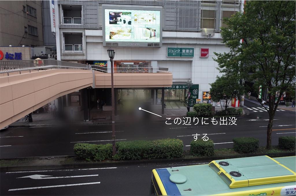 f:id:usakohiroshi242:20190820184419j:image