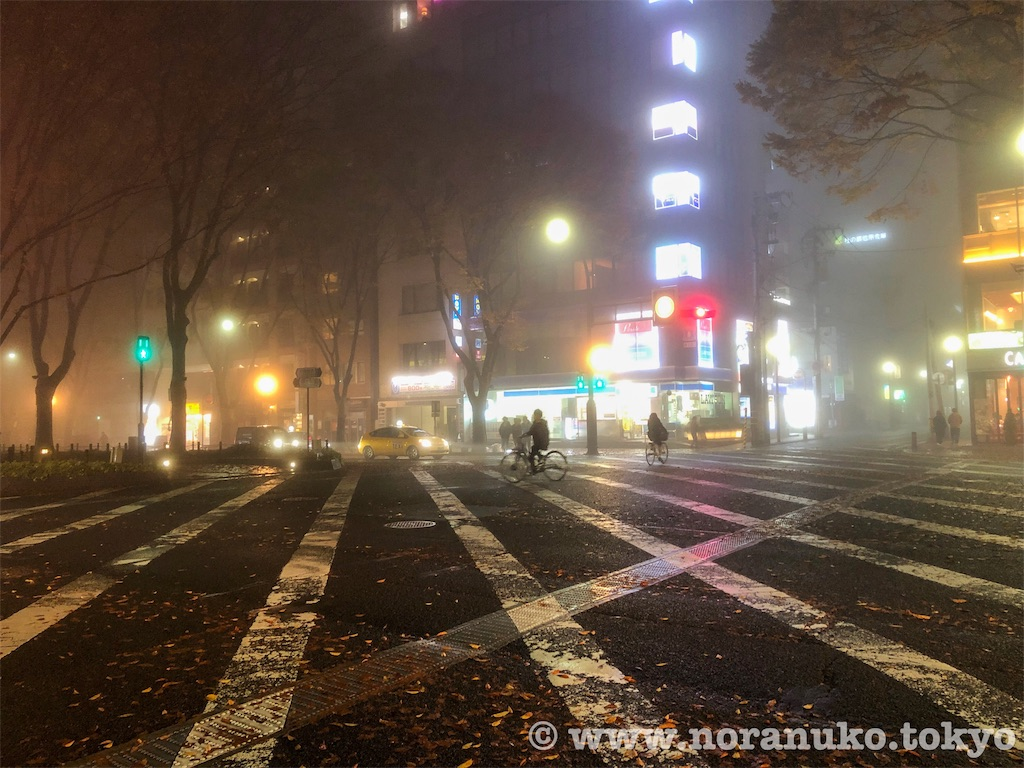 f:id:usakohiroshi242:20191125174608j:image