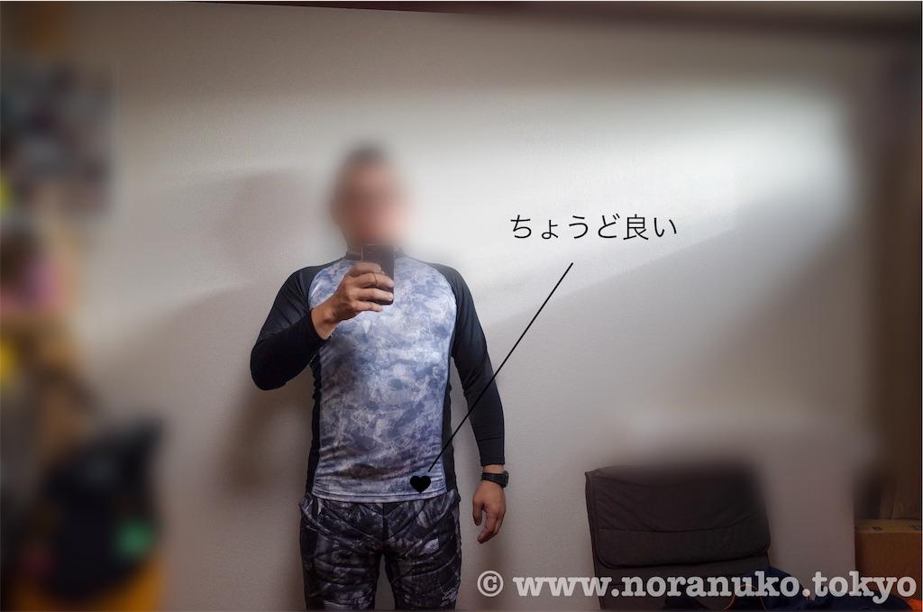 f:id:usakohiroshi242:20191130113335j:image