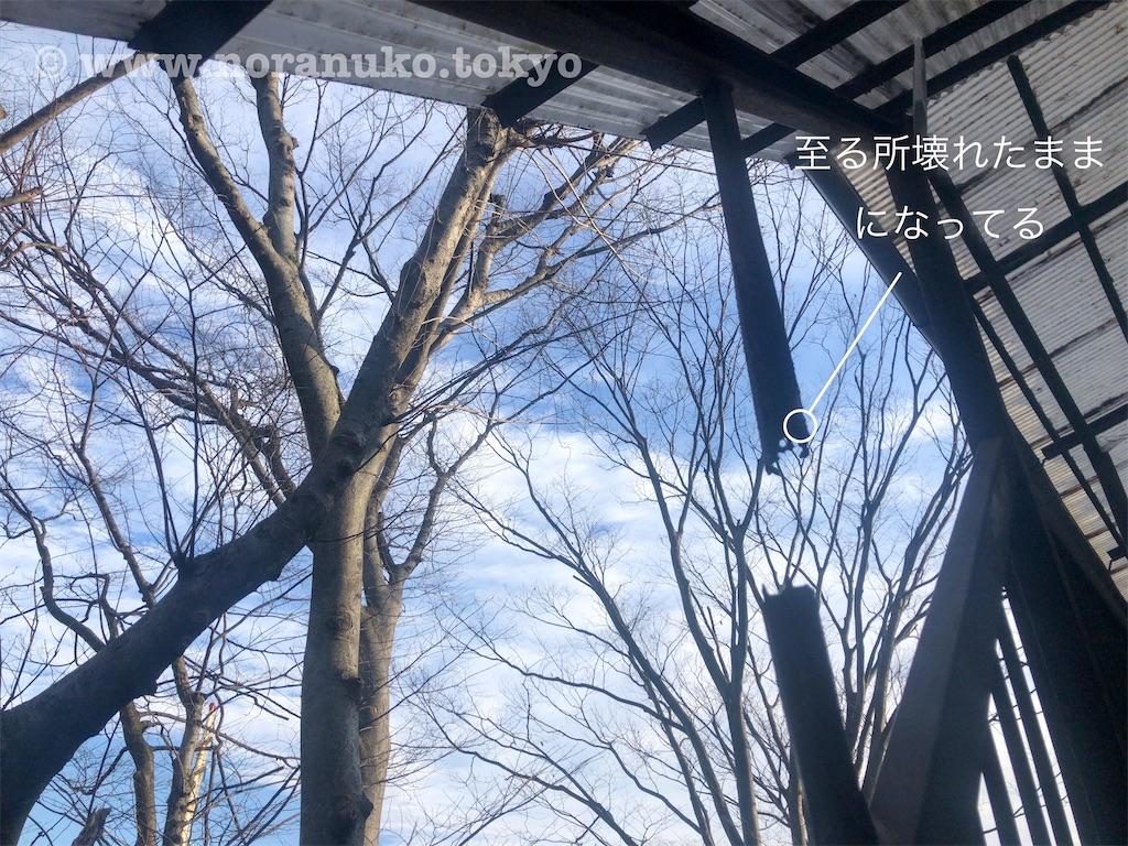 f:id:usakohiroshi242:20200126085018j:image