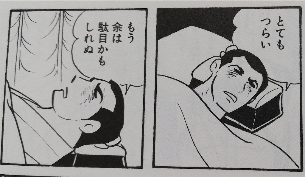 f:id:usakohiroshi242:20200502144810j:image