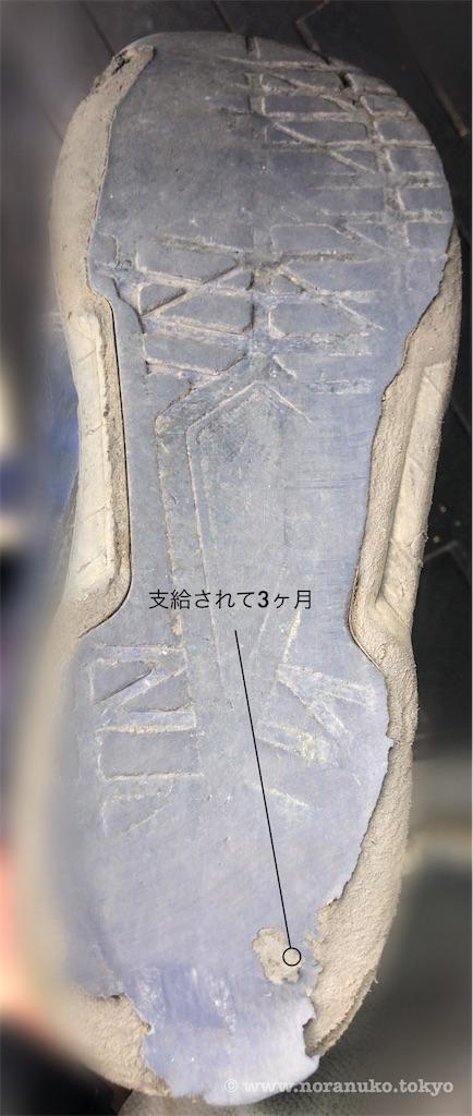 f:id:usakohiroshi242:20200512204208j:plain