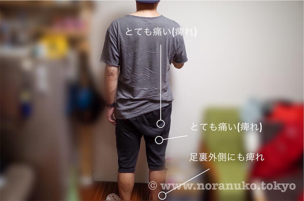 f:id:usakohiroshi242:20200524185701j:image
