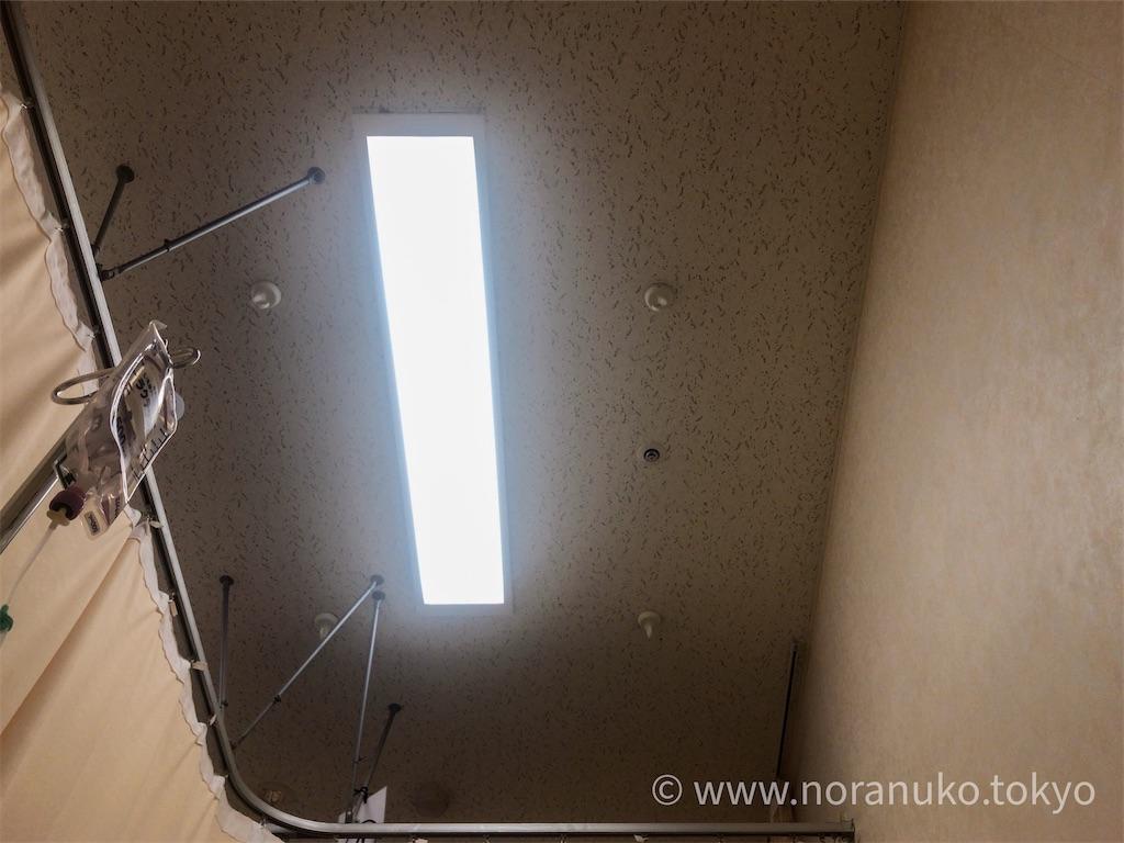 f:id:usakohiroshi242:20200814064120j:image