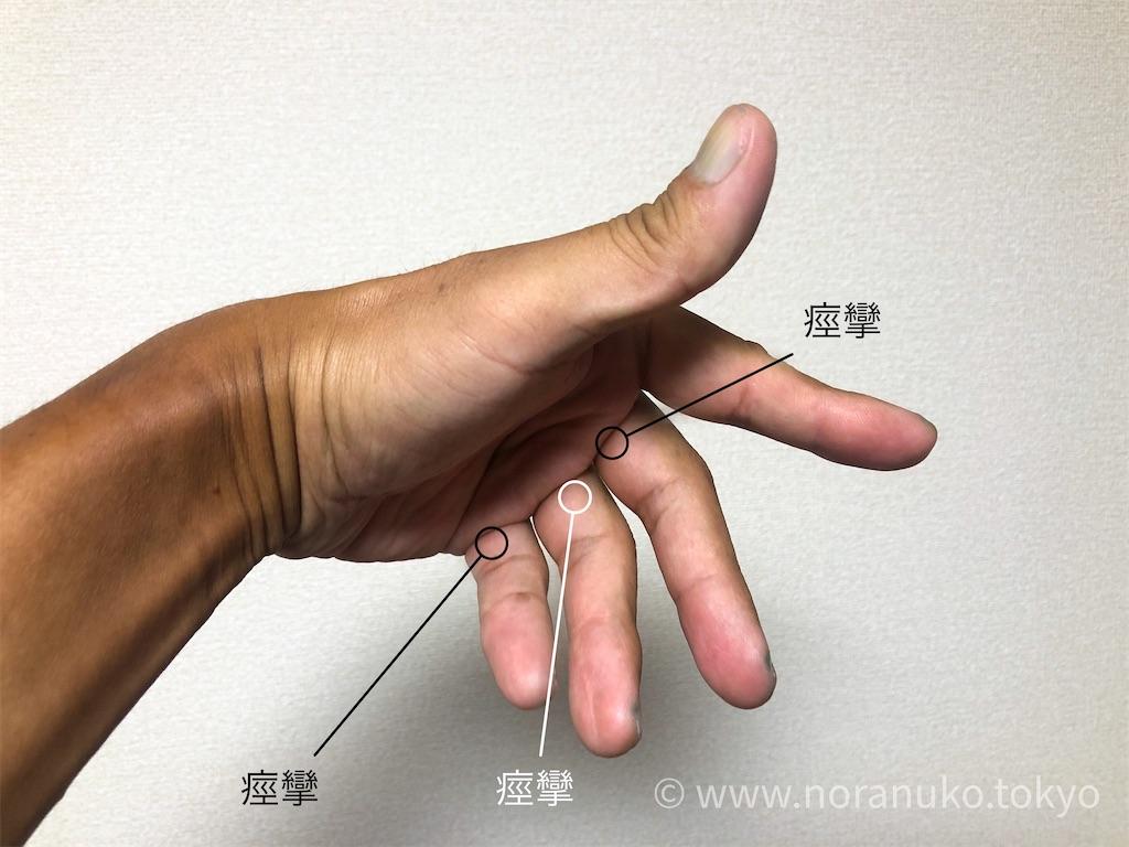 f:id:usakohiroshi242:20200830180017j:image