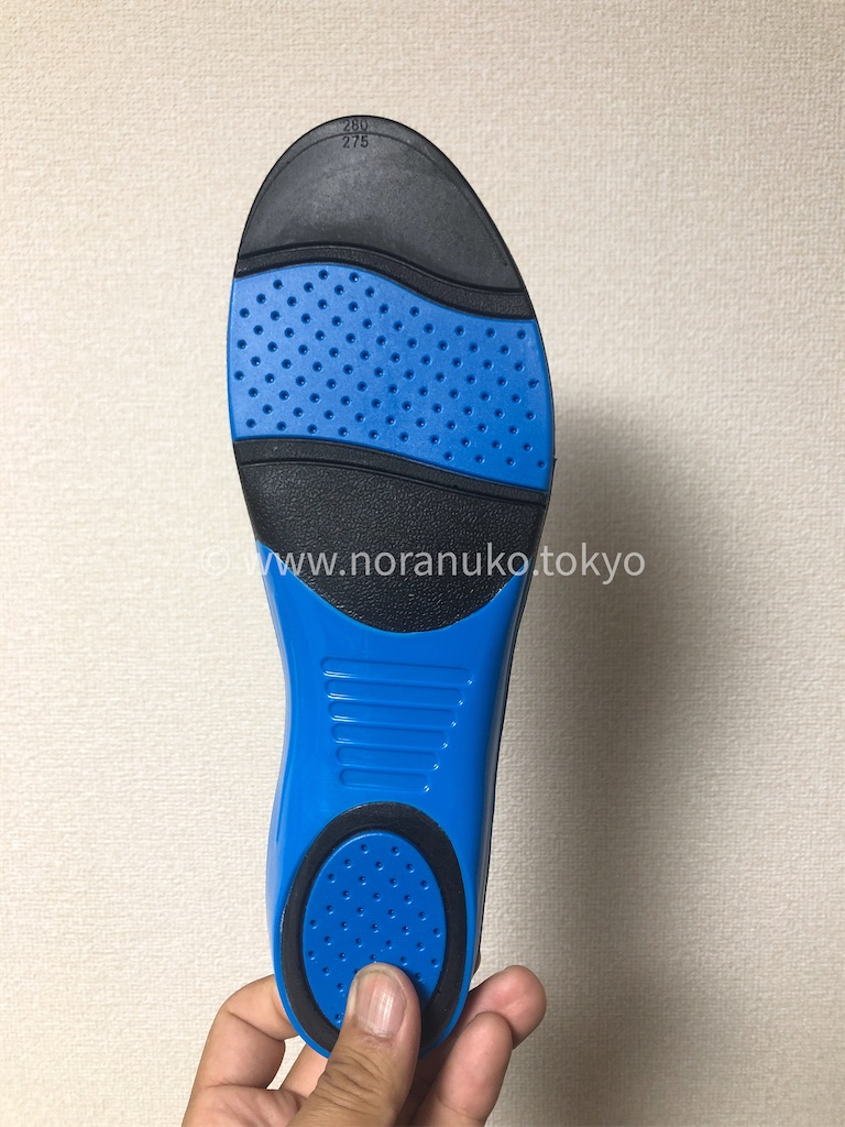 f:id:usakohiroshi242:20201010065448j:image