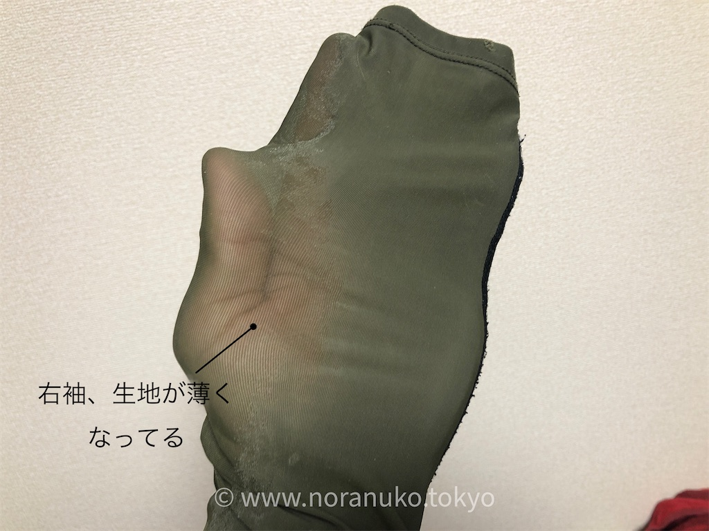 f:id:usakohiroshi242:20201109043525j:image