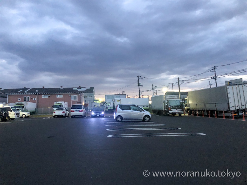 f:id:usakohiroshi242:20201117061227j:image