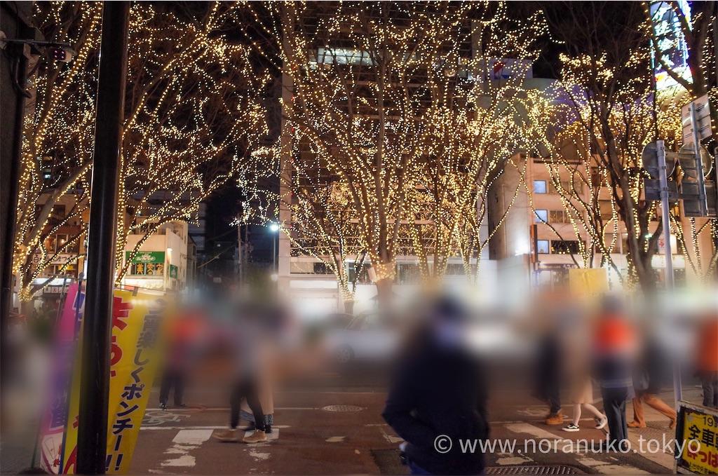 f:id:usakohiroshi242:20201226195015j:image