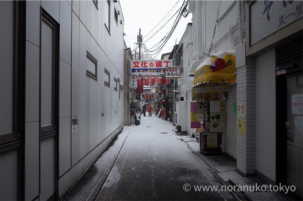 f:id:usakohiroshi242:20210101194024j:image