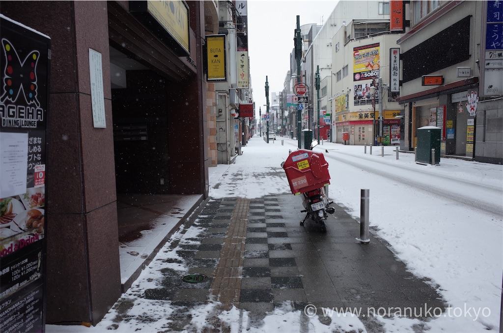 f:id:usakohiroshi242:20210101194125j:image