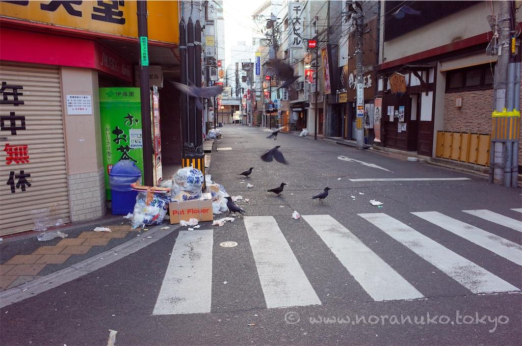 f:id:usakohiroshi242:20210307153151j:plain