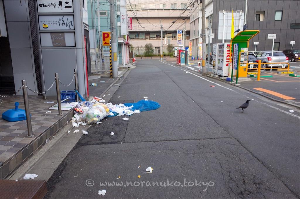 f:id:usakohiroshi242:20210405054651j:image