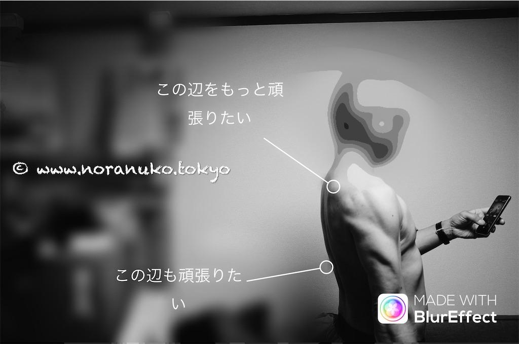 f:id:usakohiroshi242:20210428173401j:image