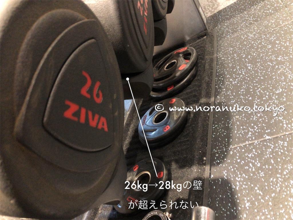 f:id:usakohiroshi242:20210523133537j:image