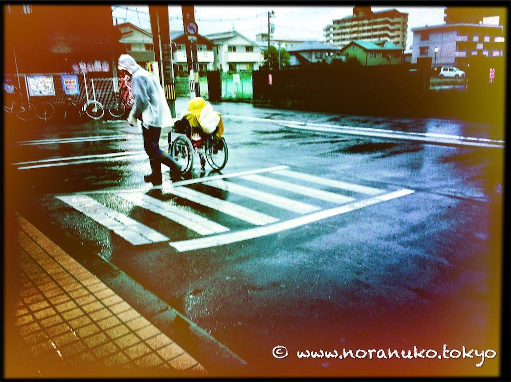 f:id:usakohiroshi242:20210605123628j:image