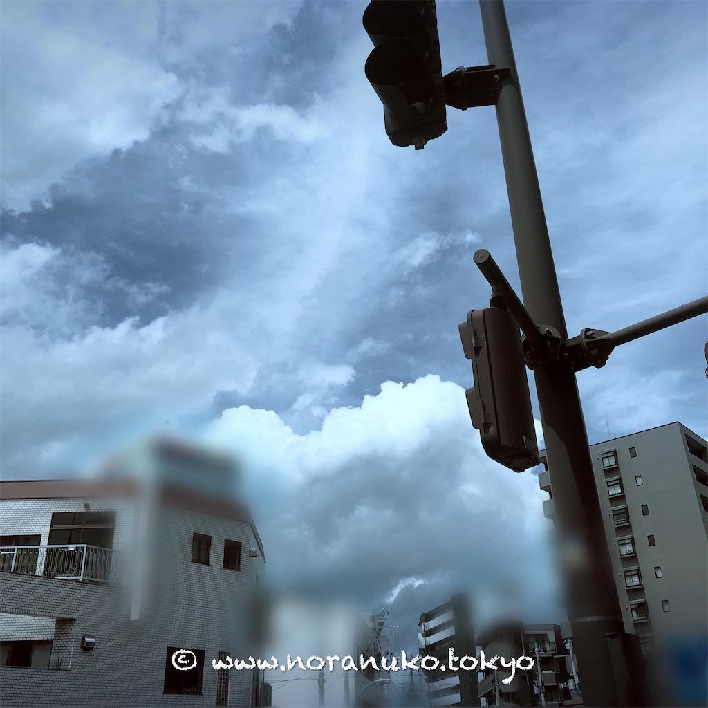 f:id:usakohiroshi242:20210623203835j:image