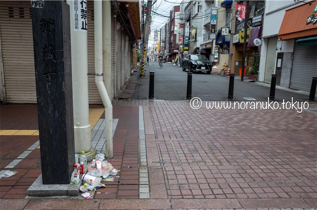 f:id:usakohiroshi242:20210731160901j:image