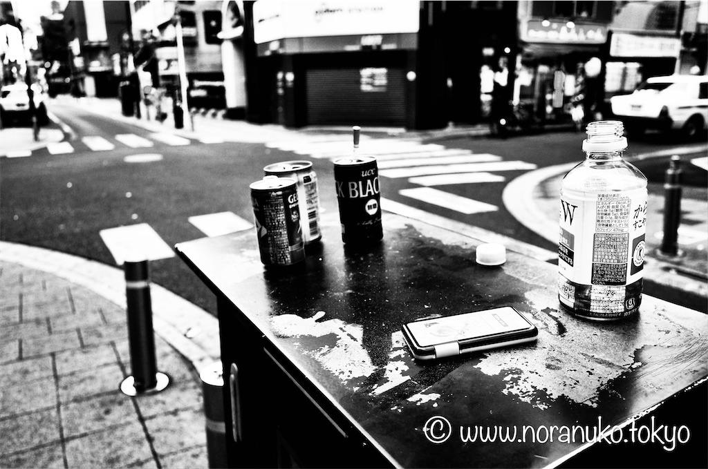 f:id:usakohiroshi242:20210802113455j:image
