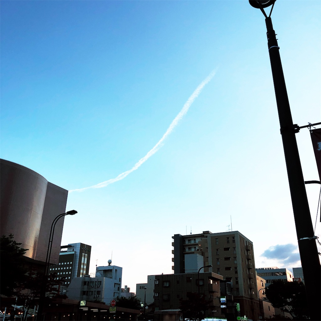 f:id:usakohiroshi242:20210803003637j:image