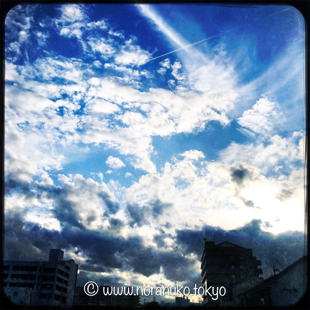 f:id:usakohiroshi242:20210826045157j:image