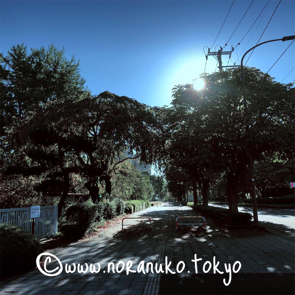 f:id:usakohiroshi242:20210920171613j:image