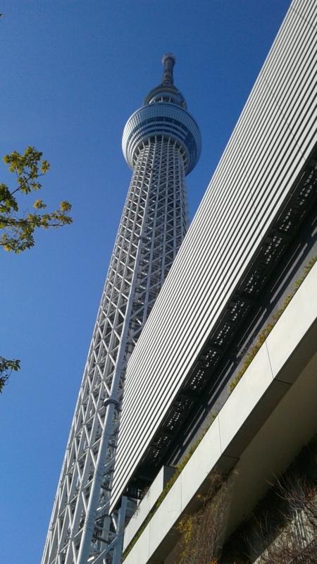 f:id:usamiyuki-achan:20170103193311j:image:left
