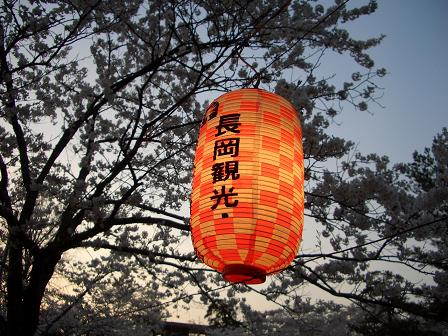 悠久山1.JPG