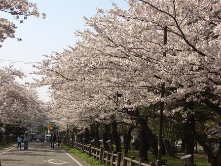 村松公園.JPG