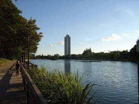 浮間公園の池。