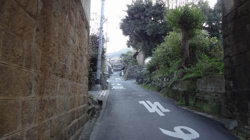 f:id:usausacafe:20161218162012j:plain