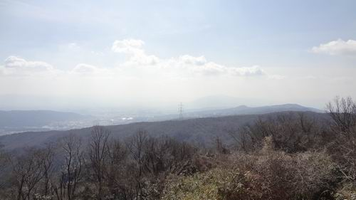 f:id:usausacafe:20170226163008j:plain