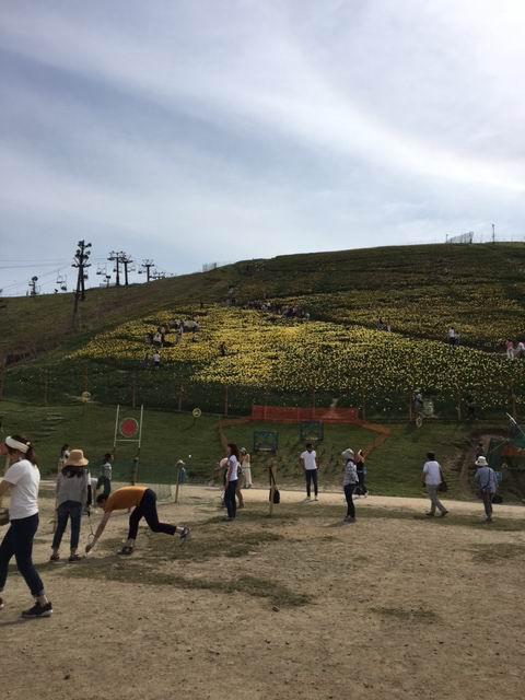 f:id:usausacafe:20170522113507j:plain