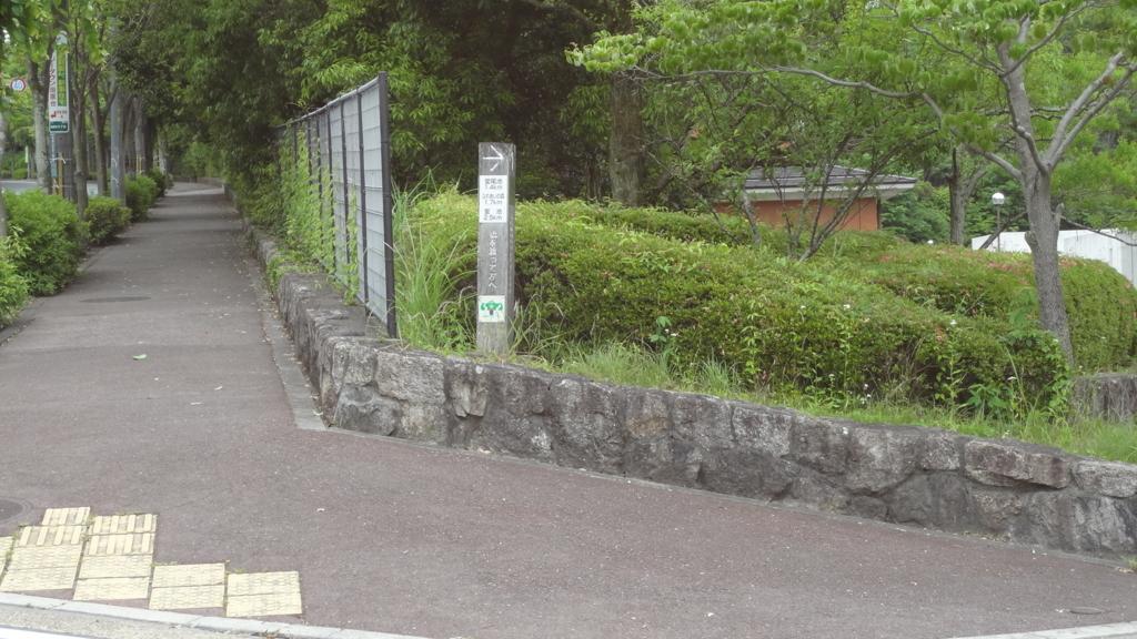 f:id:usausacafe:20170611211243j:plain