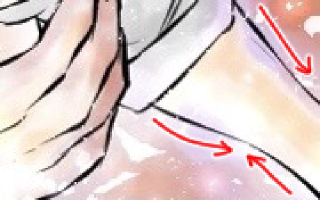 腕部分を拡大した参考イラスト