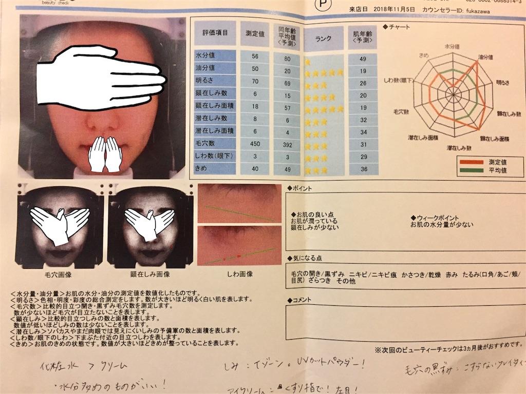 f:id:usayoshi:20181106221744j:image
