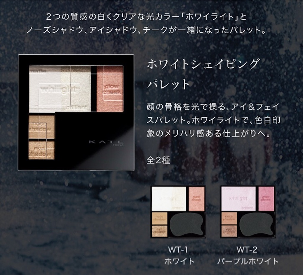 f:id:usayoshi:20190216094110j:plain